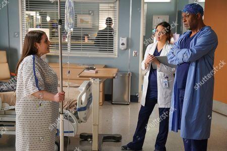 Beanie Feldstein as Tess Anderson, Camilla Luddington as Dr. Jo Karev and James Pickens Jr. as Dr. Richard Webber