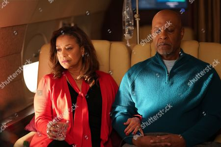 Stock Image of Debbie Allen as Dr. Catherine Fox and James Pickens Jr. as Dr. Richard Webber