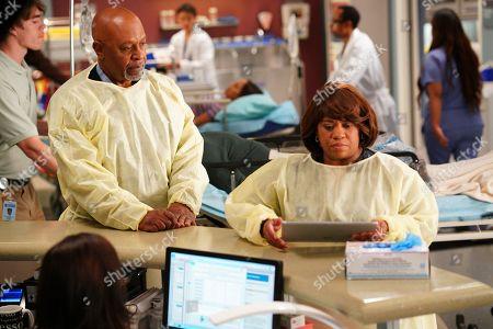 James Pickens Jr. as Dr. Richard Webber and Chandra Wilson as Dr. Miranda Bailey