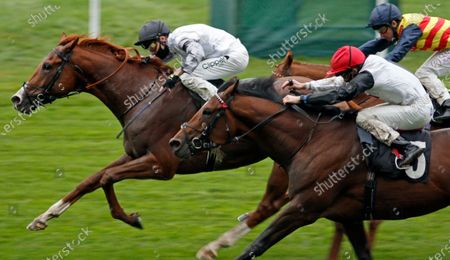 TYSON FURY (Kieran Shoemark) beats GOLDEN RULES (right) in The Charlie Waller Trust Novice Stakes Ascot