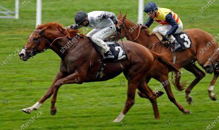 TYSON FURY (Kieran Shoemark) wins The Charlie Waller Trust Novice Stakes Ascot