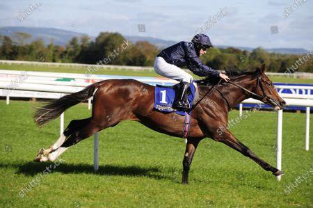 TIPPERARY CARLISLE BAY and Michael Hussey win The Irish Stallion Farms EBF Maiden. Healy Racing