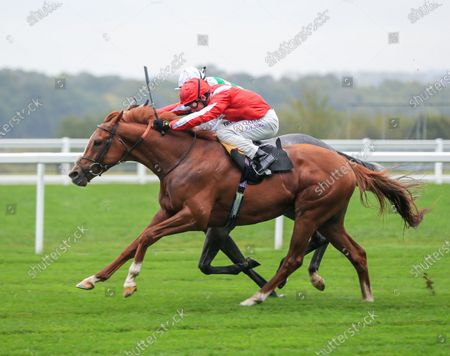 Berkshire Rocco -Oisin Murphy wins from Albaflora - Harry BentleyThe Teentech Noel Murless Stakes (Listed Race) (Class 1) (3yo)Ascot  2.10.20