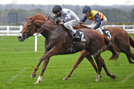 Tyson Fury (Kieran Shoemark) wins the Charlie Waller Trust Novice Stakes at Ascot Racecourse 2nd October 2020, supplied by Hugh Routledge.