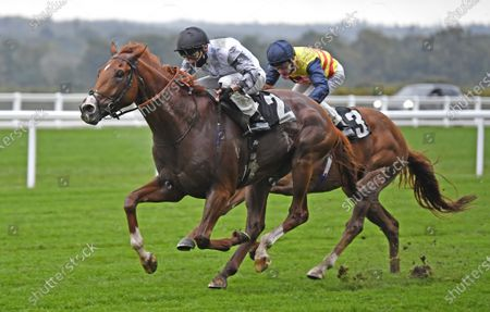 Stock Image of Tyson Fury (Kieran Shoemark) wins the Charlie Waller Trust Novice Stakes at Ascot Racecourse 2nd October 2020, supplied by Hugh Routledge.