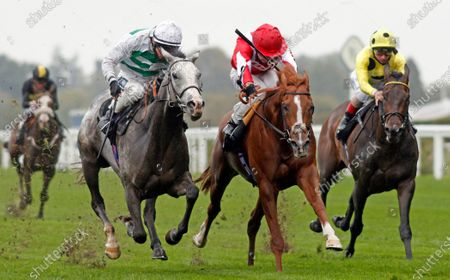 Editorial picture of Charlie Waller Trust Novice Stakes at Ascot Racecourse, UK - 02 Oct 2020