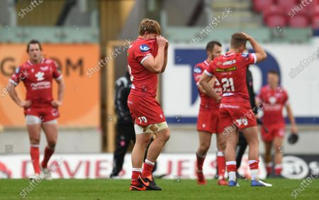 James Davies of Scarlets looks dejected at the end of the game.