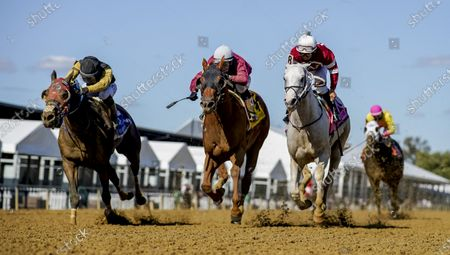 Editorial picture of Horse Racing Preakness Stakes Day, Baltimore, USA - 03 Oct 2020
