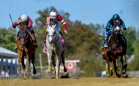 Stock Image of , 2020, Baltimore, MD, USA: Laki #4, ridden by jockey Horacio Karamanios, wins the Frank J. DeFrancis Memorial Dash during Preakness Stakes Day at Pimlico Race Course in Baltimore, Maryland. Scott Serio/Eclipse Sportswire/CSM