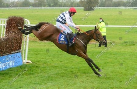 Tipperary GALVIN and Davy Russell jump the last to win the Like A Butterfly Novice Steeplechase (Grade 3). Healy Racing