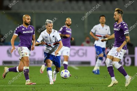 "Sofyan Amrabat (Fiorentina)Valerio Verre (Sampdoria)Gaetano Castrovilli (Fiorentina)           during the Italian  Serie A"" match between Fiorentina 1-2 Sampdoria  at  Artemio Franchi Stadium   on October 02 , 2020 in Florence, Italy."
