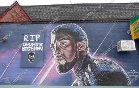 Editorial image of Chadwick Boseman Black Panther Tribute Mural, Brooklyn, New York, USA - 27 Sep 2020