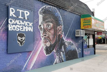 Artist Kenny Altidor poses in front of a mural honoring actor Chadwick Boseman at Clarendon Rd and East 56th Street in the East Flatbush section of Brooklyn NY. Altidor created the mural featuring the actor as the Black Panther to pay tribute to Boseman who died from cancer this year.