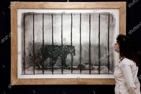 Stock Image of The Caged Panther from 'Confessions of Zeno' by William Kentridge, est. £70,000 - 100,000, which features in the Modern & Contemporary African Art Sale taking place at Bonhams in New Bond Street, Monday 5 October, London.