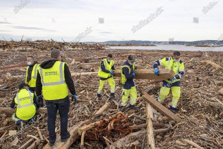 Tempete Alex, Operations d'evacuation des dechets de bois accumules par la crue du Var (plusieus tonnes de bois et de troncs d'arbres) 100 agents de la ville et 200 benevoles, mais ainsi des particulier qui recupere de bois pour un usage personnelle, Saint-Laurent du Var FRANCE - 07/10/2020