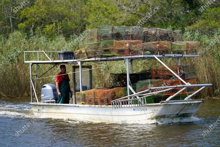 Jule Chaisson motors his boat to the dock after pulling some of his crab traps from Bayou Dularge in anticipation of Hurricane Delta, expected to arrive along the Gulf Coast later this week, in Theriot, La., . He said he pulled around 1,000 traps over the last three days