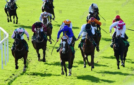 Editorial image of Horse Racing - 09 Oct 2020
