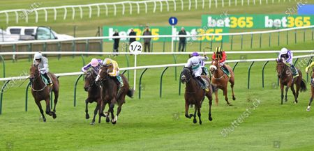 (3rd L) Pretty Gorgeous (Shane Crosse) wins The bet365 Fillies Mile. In this race the two Aidan O'Brien trained horses in pink cap (2nd L-raced as Snowfall but was in fact Mother Earth) and white cap (extreme R-raced as Mother Earth but was in fact Snowfall) were accidentily raced under each others names.
