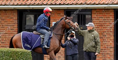 Stock Photo of PALACE PIER (Frankie Dettori) with John Gosden before galloping at Newmarket