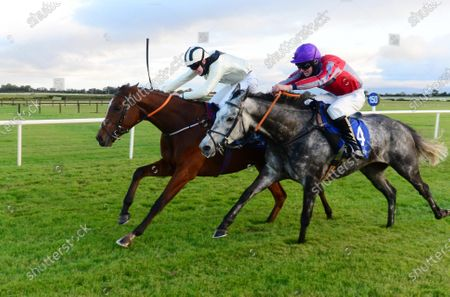 Stock Image of Fairyhouse IT COULD BE YOU and Charlie Mullins (near) win the Irish Stallion Farms EBF Auction Flat Race from MIND YOUR MONEY and Harry Swan (far). Healy Racing