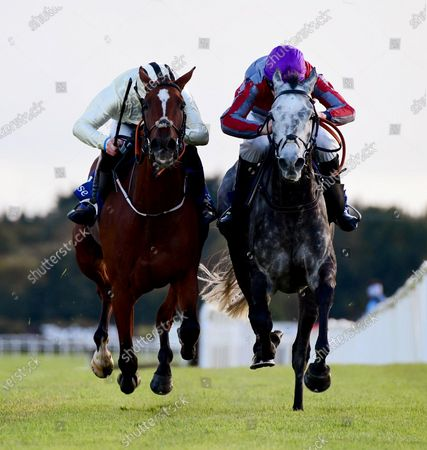 Fairyhouse MIND YOUR MONEY & Harry Swan (left) were first past the post in the Irish Stallion Farms EBF Auction FLat Race but after a stewards enquiry they were disqualified and the race was awarded to IT COULD BE YOU & CHarlie Mullins (right)