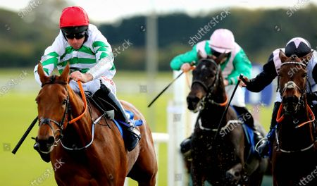 Stock Picture of The Irish Stallion Farms EBF Maiden Hurdle. Davy Russell onboard Queens Brook on his way to winning