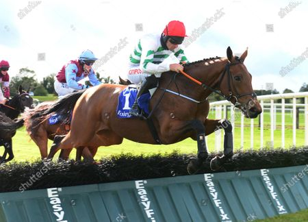 Stock Photo of Fairyhouse QUEEN'S BROOK & Davy Russell jump the last to win the Irish Stallion Farms EBF Maiden Hurdle