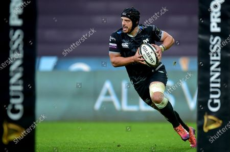 Stock Image of Ospreys vs Ulster. Ospreys' Dan Evans