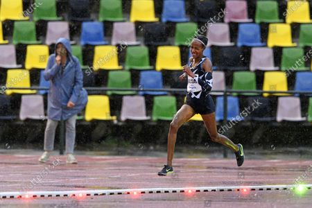Stock Image of Dutch Sifan Hassan in action during her 10,000 meters race at the FBK Late Summer race in Hengelo, The Netherlands, 10 October 2020. The athlete broke the European record in the 10,000 meters, with 29.36.67 minutes she dipped well below the European top time of Paula Radcliffe from UK.