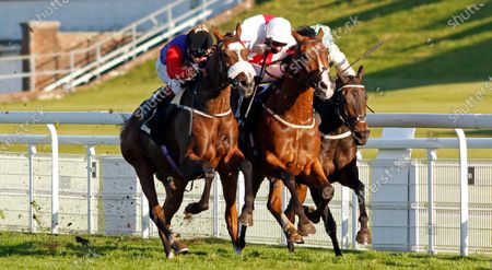 NATURAL HISTORY (left, Oisin Murphy) beats GOSHEN (centre) and SPEED COMPANY (right) in The Join tote.co.uk Handicap Goodwood