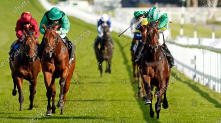 CARIBOU (right, Charles Bishop) beats MARKS BEAR (left) in The Download The tote Placepot App Irish EBF Novice Auction Stakes Goodwood