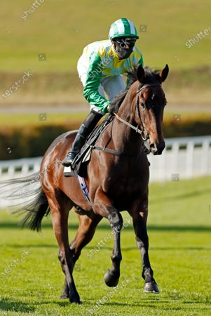 CARIBOU (Charles Bishop) winner of The Download The tote Placepot App Irish EBF Novice Auction Stakes Goodwood