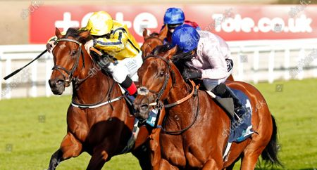 ONASSIS (right, Hayley Turner) beats WITH THANKS (left) in The British EBF October Fillies Stakes Goodwood
