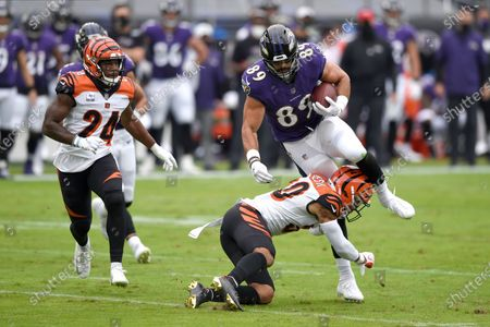Stock Photo of Cincinnati Bengals free safety Jessie Bates, bottom, makes a hit on Baltimore Ravens tight end Mark Andrews (89) during the first half of an NFL football game, in Baltimore