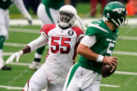 Stock Photo of Arizona Cardinals linebacker Chandler Jones (55) chases after New York Jets quarterback Joe Flacco (5) during the first half of an NFL football game, in East Rutherford