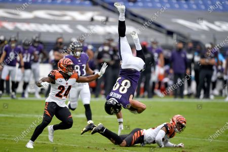 Editorial image of Bengals Ravens Football, Baltimore, United States - 11 Oct 2020