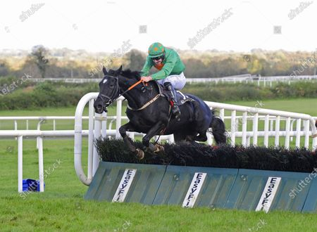 Stock Image of KILBEGGAN. MYLADYROSE and Liam McKenna win The Bellamianta Luxury Tanning Handicap Hurdle (80-95) (DIV II). Healy Racing