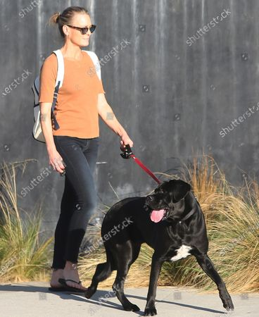 Stock Picture of Robin Wright walks her dog in Santa Monica