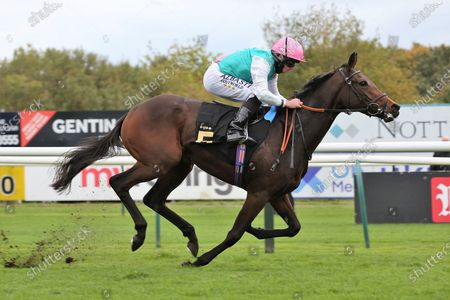 NOON STAR ridden by Ryan Moore and trained by Sir Michael Stoute winning The EBF Maiden Fillies Stakes (Plus 10/GBB Race) over 1m at Nottingham Racecourse, Nottingham