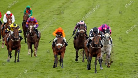 WRENTHORPE (right, Graham Lee) beats FREE LOVE (centre) in The Mansionbet Proud To Support British Racing Handicap Nottingham