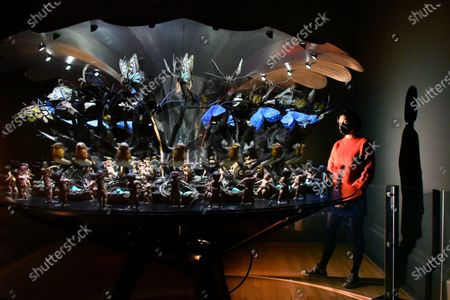 Stock Picture of Mat Collishaw, Garden of Uneartly Delights, 2009 at New Collection Displays at Tate Britain