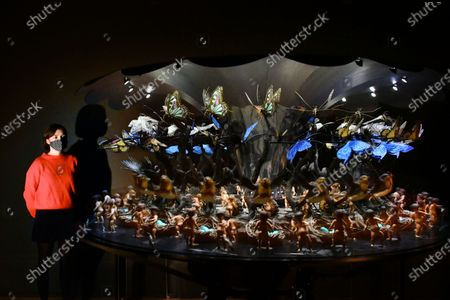 Mat Collishaw, Garden of Uneartly Delights, 2009 at New Collection Displays at Tate Britain