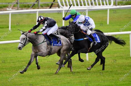 Stock Image of Tramore COLONEL LESLEY & Conor Orr win the Ardmore Handicap Hurdle from CADDY SHACK & John Berry.