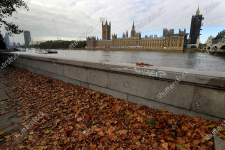 """Fallen leaves on the ground opposite Britain's Parliament in London, . Britain's foreign minister says there are only narrow differences remaining in trade talks between the U.K. and the European Union. But Dominic Raab insists the bloc must show more """"flexibility"""" if it wants to make a deal"""