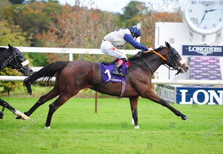Editorial picture of Horse Racing - 16 Oct 2020