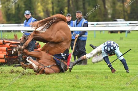 Stock Picture of Van Meegeren and Brendan Powell fall at the last  in The Heart Of The South Supports Fontwell Maiden Hurdle Race (Div.ll). Photo © Hugh Routledge.