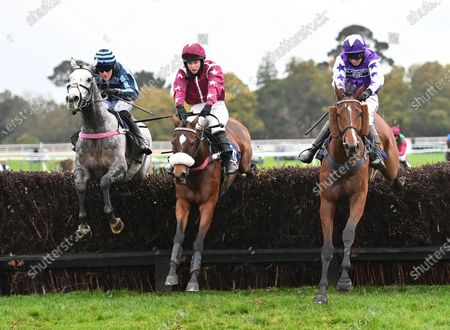 Editorial picture of Horse Racing from Fontwell Racecourse, UK - 21 Oct 2020