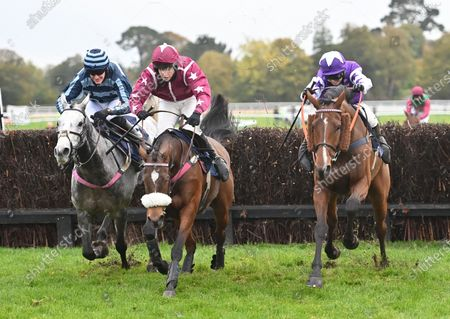 Editorial image of Horse Racing from Fontwell Racecourse, UK - 21 Oct 2020
