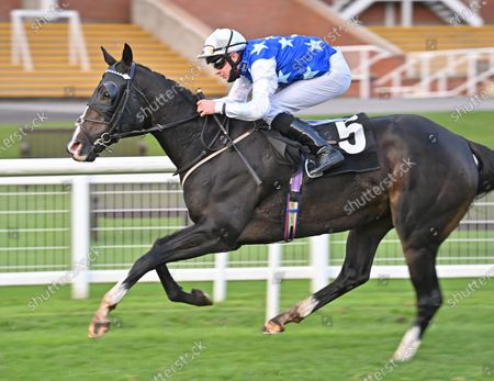 Punchbowl Flyer (Charles Bishop) wins The Rayner Bosch Car Services Handicap Stakes. Photo © Hugh Routledge.