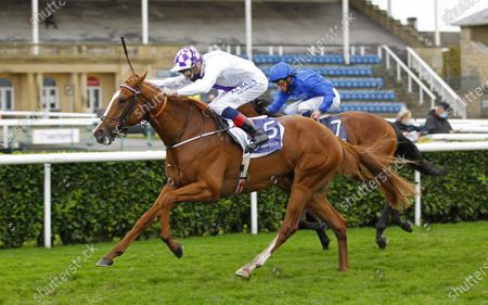 Mac Swiney and Kevin Manning win the Vertem Futurity Trophy Stakes at Doncaster from One Ruler and Baradar. 24/10/2020 Pic Steve Davies, supplied by Hugh Routledge.